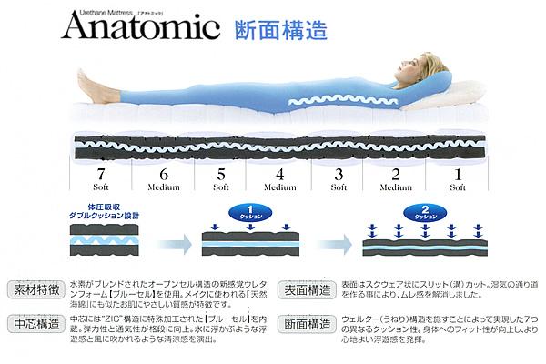 アナトミック マットレスの断面構造