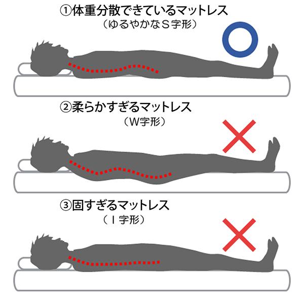 寝姿勢と背骨の状態